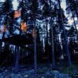 treehotelnew02